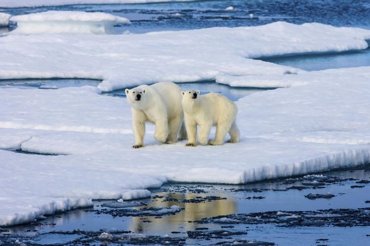 奢游北极四岛&极北之境19日之旅